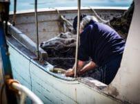 salvini favignana tonno